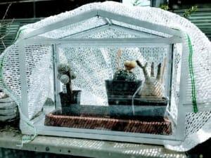 イケアのSOCKER/ソッケルで家に小さな温室作りました